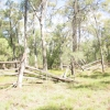 Site History and Recording of the Sawmill Site at Ironbarks Crossing Pilliga East State Conservation Area.