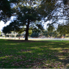 Heritage Impact Statement for Arncliffe Park