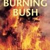 Fuel for the bushfire debate